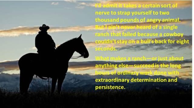 Bull Riding & Success